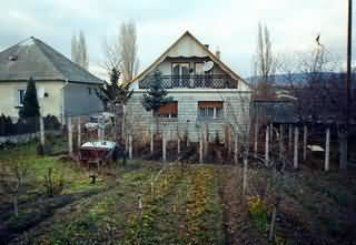 Balaton, Öskü