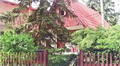 Tata - falusi turizmus szállás