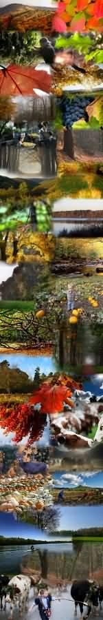 falusi turizmus ősz