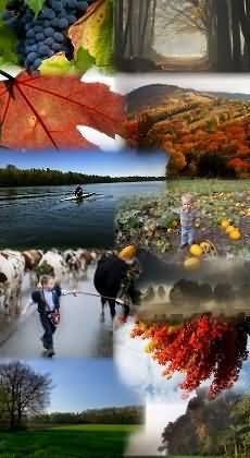 falusi turizmus tavasszal