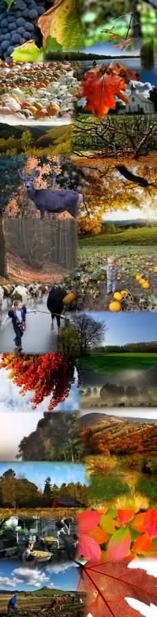 falusi turizmusosz_230x900_1.jpg